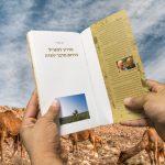 ספר מדריך למטייל בדרום מדבר יהודה