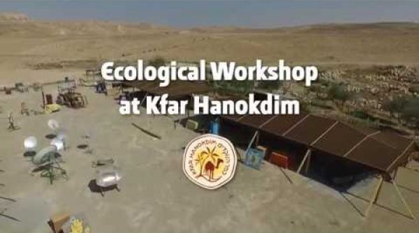 Ecological Workshop
